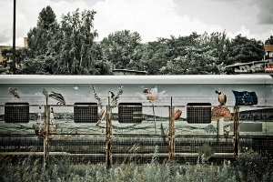 Berlin - Train To Freedom